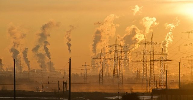 toksi`ni zamyrseni mesta na sweta